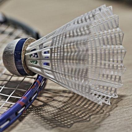 Badminton Training Starts January
